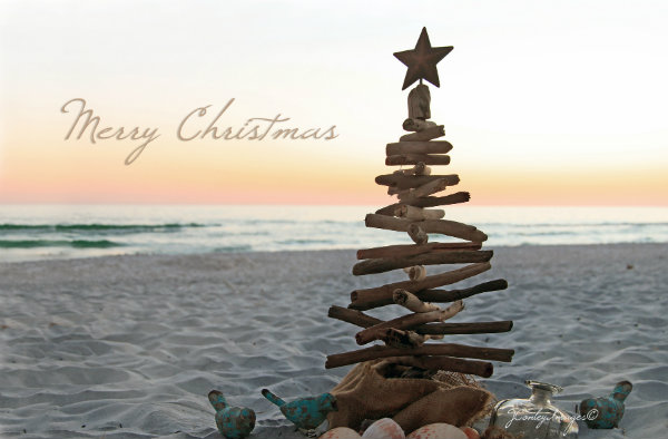 merry christmas from davis properties