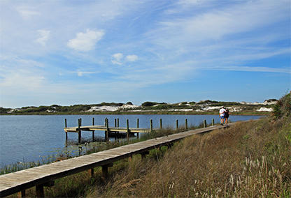 homes for sale in watersound beach fl