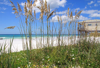 dune allen beach real estate