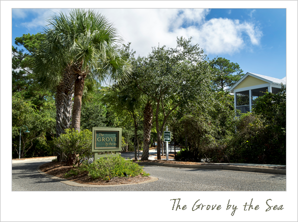 the grove by the sea